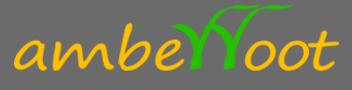 Amberroot Systems Pvt Ltd