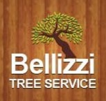 Belizzi Tree Service