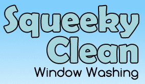Squeeky Clean Window Washing